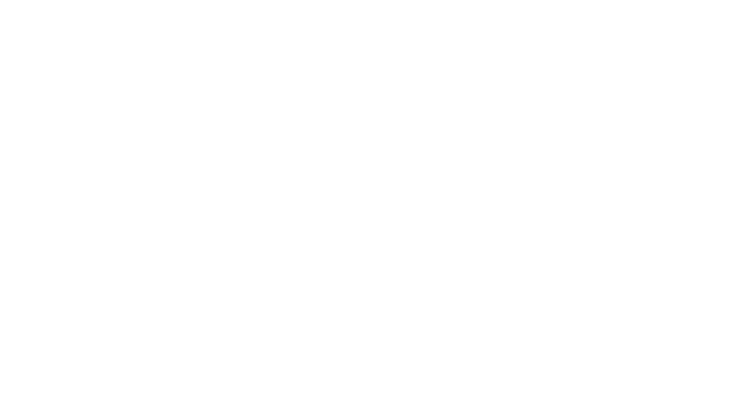 THE SHOW 2020