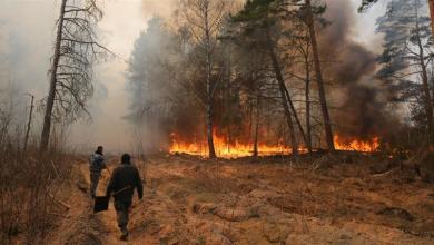 صورة اليونان لم تتأثر بحرائق الغابات القريبة من مفاعل تشيرنوبيل