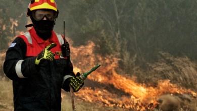 Photo of حريق في منطقة غابات أندروس