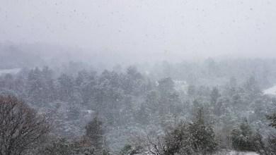 صورة الطقس: غزو بارد من قبل لياندروس – أين ستثلج