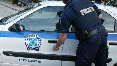 صورة شرطة ميتيليني في جزيرة ليسفوس تبحث عن صاحب كلب بيتبول هاجم طفل