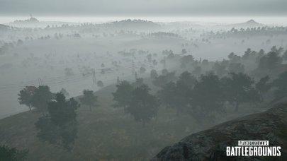 PUGB Fog