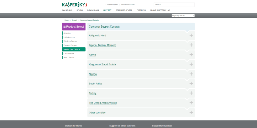 Kaspersky lab Support