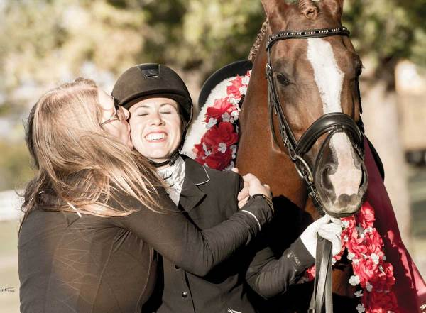 2017 Sport Horse National Show Results