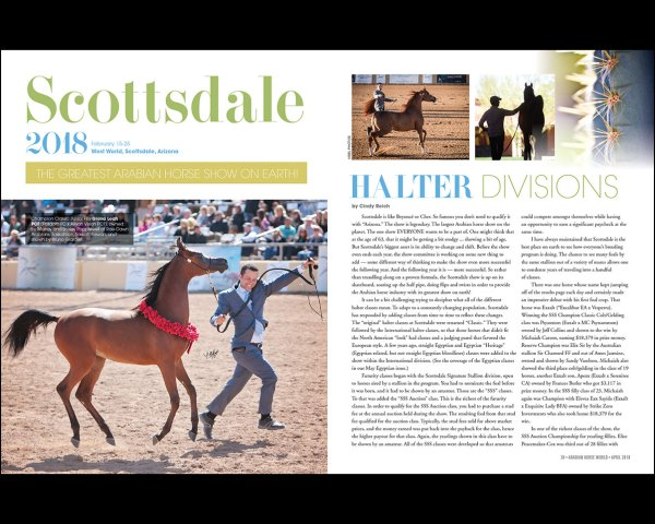 Scottsdale: Halter — The Greatest Arabian Horse Show on Earth!