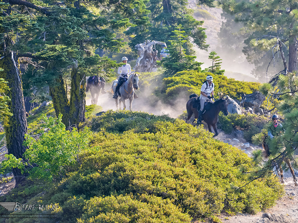 63rd Western States Tevis Cup Endurance Ride