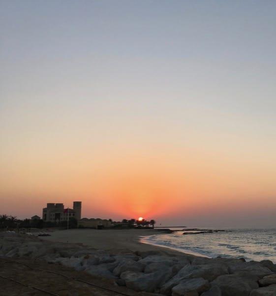 sir-baniyas-island-arabian-notes-oct-2016-29