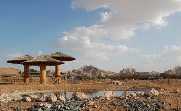 Things to do in Al Ain Arabian Notes January 2016 1