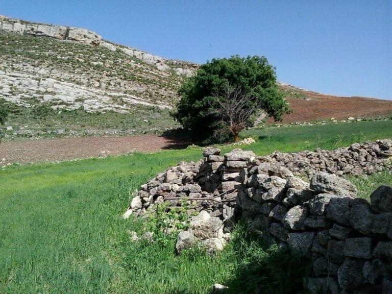 Paisaje campestre del norte de Argelia, entre las aldeas de Mila, Ain Tinn y Sidi Khelifa