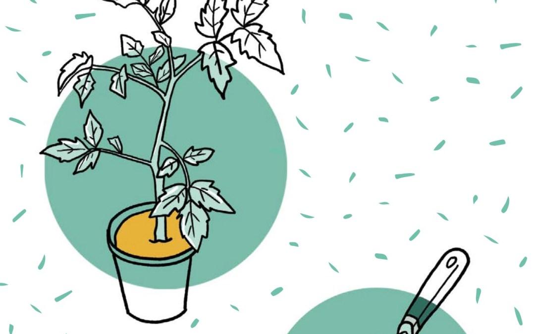 مبادئ الزراعة البيئية | الزراعة العضوية المستدامة