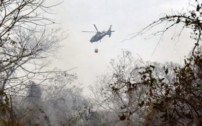 البيرو وكولومبيا تقترحان عقد قمة إقليمية طارئة بشأن حرائق الامازون