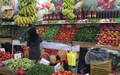 الكويت تدقق في شحنات الخضر والفواكه اللبنانية وتسمح باستيرادها بحرا وجوا فقط