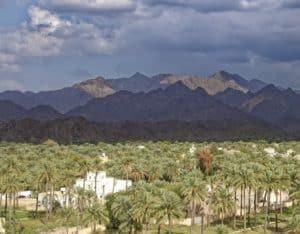 Wie ein Paradies liegen die Oasenstädte in der Wüstenlandschaft des Oman