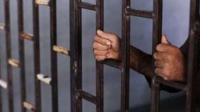Photo of السعودية ستفرج عن ألف سجين إثيوبي