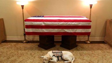 Photo of تعرف على الشَّيْء العزيز الذي سيدفن مع بوش الأب في مقبرته