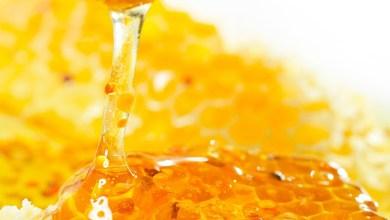 Photo of ماذا تفعل ملعقة عسل قبل النوم في جسمك؟