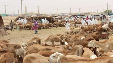 Photo of 13 مليار دولار استثمارات كويتية في السودان