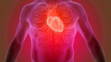 Photo of مكمل غذائي فوائده متعددة.. يساعد مرضى القلب وباركنسون