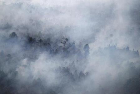 دخان حرق غابات في  اندونيسيا - ارشيف  رويترز
