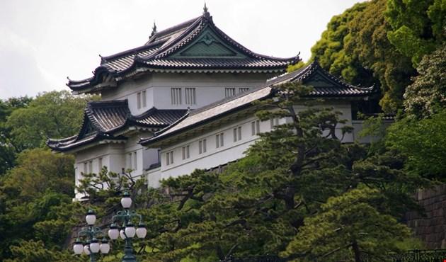 اليابان: الإمبراطور يمهد للتنازل عن العرش