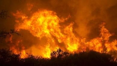 Photo of فرار 200 ألف شخص من منازلهم بسبب حريق في لوس أنجلس