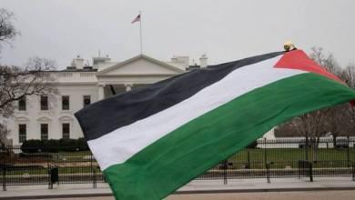 Photo of فلسطين وأمريكا.. إلى أين تنتهي ضغوط صفقة القرن؟