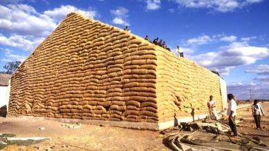 Photo of منظمة الفاو : تراجع أسعار الحبوب والزيوت والسكر الشهر الماضي