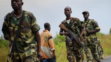 Photo of تحرير سائحة أمريكية مختطفة في أوغندا بعد دفع الفدية