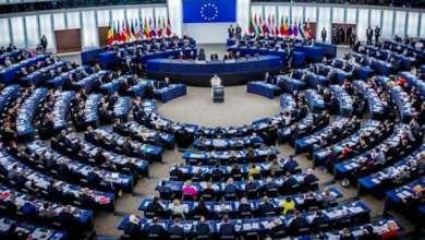 Photo of تعرف على أول مصري وعربي يخوض انتخابات البرلمان الأوروبي