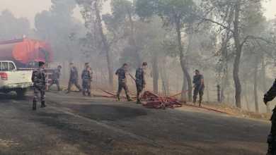 Photo of حريق ضخم في غابات جرش بالأردن