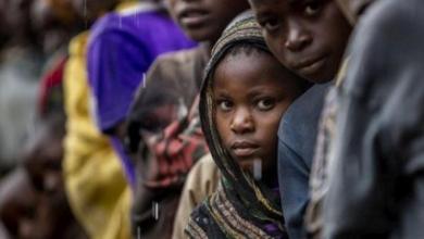Photo of 7 ملايين يواجهون مخاطر نقص المواد الغذائية بجنوب السودان