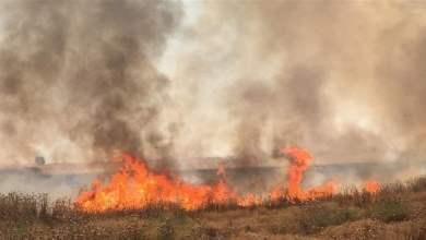 Photo of تونس- غموض حول أسباب اندلاع حرائق الأراضي الزراعية