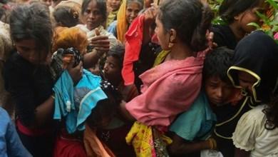 Photo of تقرير ينتقد قصور جهود الأمم المتحدة تجاه أقلية الروهينجا المسلمة