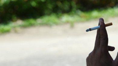 "Photo of الحدائق الباريسية ترفع شعار ""ممنوع التدخين"" !"