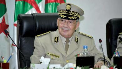 Photo of رئيس الأركان الجزائري: ليس لنا طموح سياسي ونسعى لخدمة البلاد