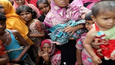 Photo of الهند: ارتفاع حصيلة وفيات متلازمة التهاب الدماغ الحاد إلى 100 طفل