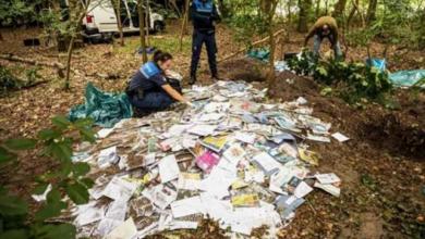 Photo of العثور على مقبرة للرسائل البريدية في غابة هولندية