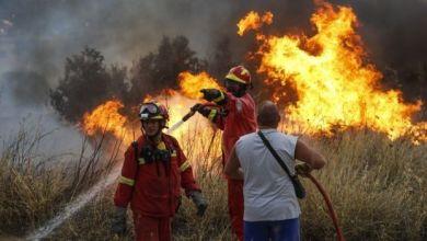 Photo of آلاف الجنود ينجحون في السيطرة على حريق غابات ضخم في ألمانيا