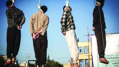 Photo of خبير: عدد الإعدامات في إيران الأعلى على مستوى العالم