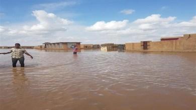 Photo of استنفار في السودان لمواجهة فيضان مرتقب بعد ارتفاع منسوب النيل الأزرق