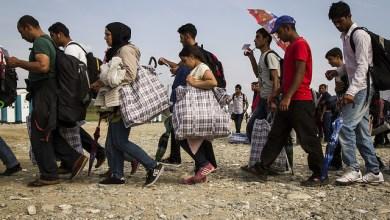 Photo of ارتفاع أعداد المهاجرين إلى 272 مليون شخص حول العالم