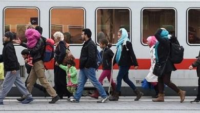 Photo of انخفاض طلبات اللجوء إلى النمسا وارتفاع المهاجرين إلى 23.3%