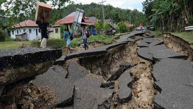 Photo of ارتفاع عدد قتلى الانهيار الأرضي في الكاميرون إلى 34 شخصًا