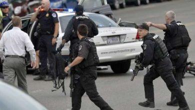 Photo of 44 جريمة قتل يوميًا في أمريكا معظمها بأسلحة نارية