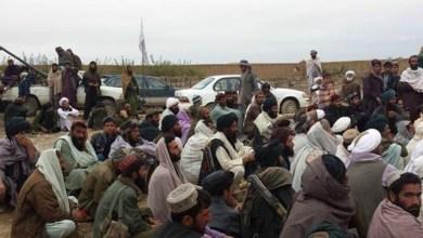 Photo of مقتل 9 من مسلحي طالبان بسبب التسمم