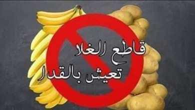 Photo of الشعب التونسي يطلق حملة مقاطعة لمواجهة غلاء الأسعار
