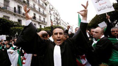 Photo of محامو الجزائر ينضمون للحراك منددين بسلسلة الاعتقالات