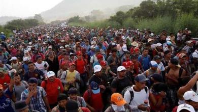 Photo of أمريكا تخطط لجمع بيانات الحمض النووي للمهاجرين غير الشرعيين