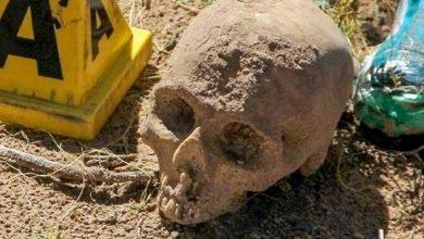Photo of العثور على أكثر من 40 جمجمة في المكسيك