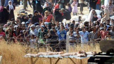 Photo of انتقادات أممية لقرار ترامب بتخفيض أعداد اللاجئين